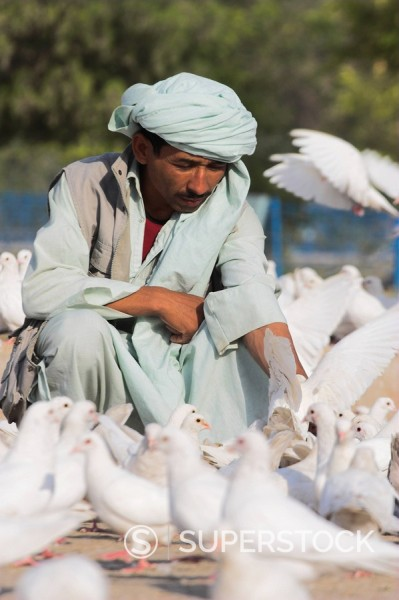 Stock Photo: 1890-16354 Man feeding the famous white pigeons, Shrine of Hazrat Ali, Mazar_I_Sharif, Balkh province, Afghanistan, Asia