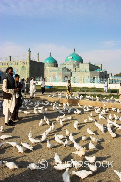 Stock Photo: 1890-16360 People feeding the famous white pigeons, Shrine of Hazrat Ali, Mazar_I_Sharif, Balkh province, Afghanistan, Asia