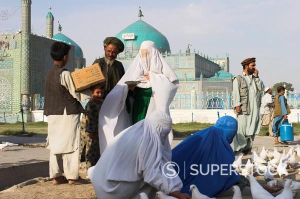 Stock Photo: 1890-16365 Family feeding the famous white pigeons, Shrine of Hazrat Ali, Mazar_I_Sharif, Balkh province, Afghanistan, Asia