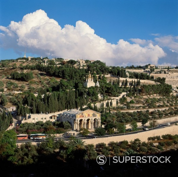 Stock Photo: 1890-1856 Mount of Olives, Jerusalem, Israel, Middle East