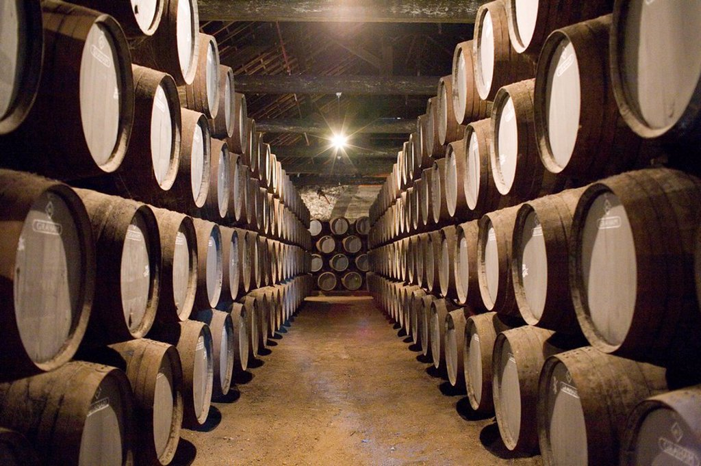 Stock Photo: 1890-20101 Traditional port barrels in which tawny port is maturing, in cellars of port lodge Ramos Pinto, Av. Ramos Pinto, Vila Nova de Gaia, Oporto, Portugal, Europe