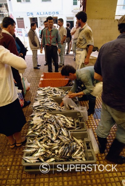 Fish market, Funchal, Madeira, Atlantic, Portugal, Europe : Stock Photo