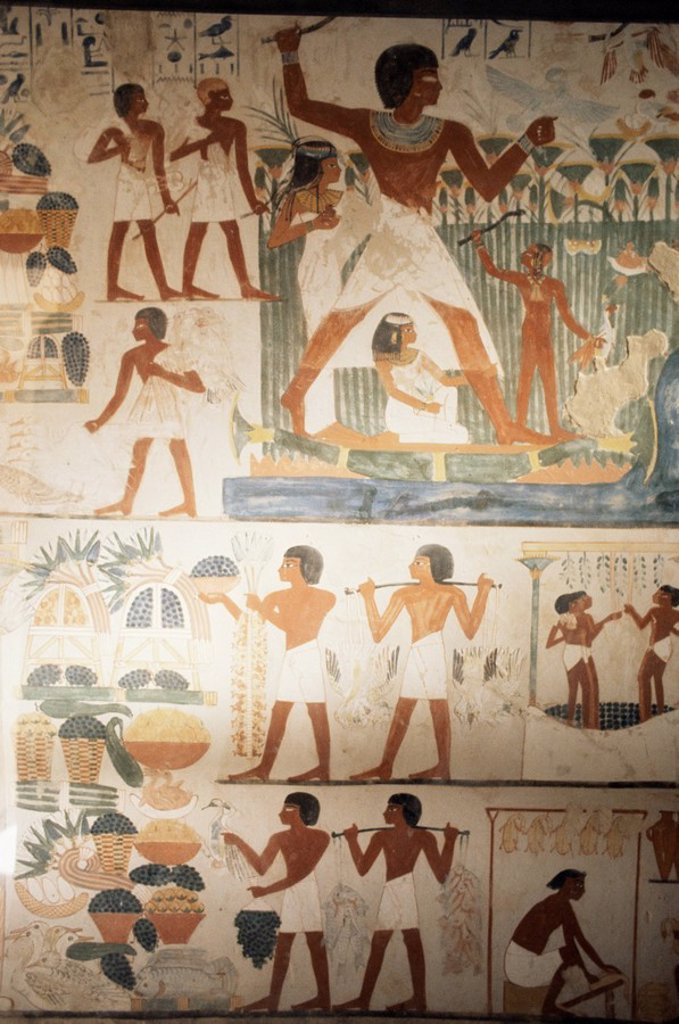 Paintings of scenes of everday life in the tomb of Nakht, Minister of Agriculture in the reign of Tutmosis IV, Valley of the Nobles, Thebes, UNESCO World Heritage Site, Egypt, North Africa, Africa : Stock Photo