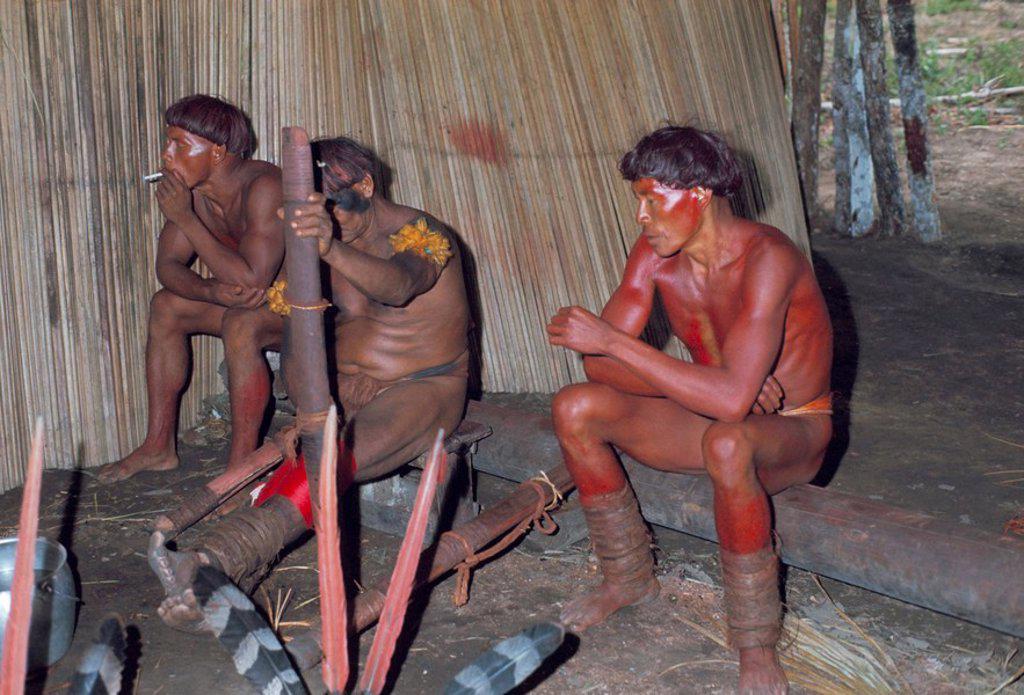 Stock Photo: 1890-23091 Kamayura Indians playing flutes inside hut, Xingu area, Brazil, South America
