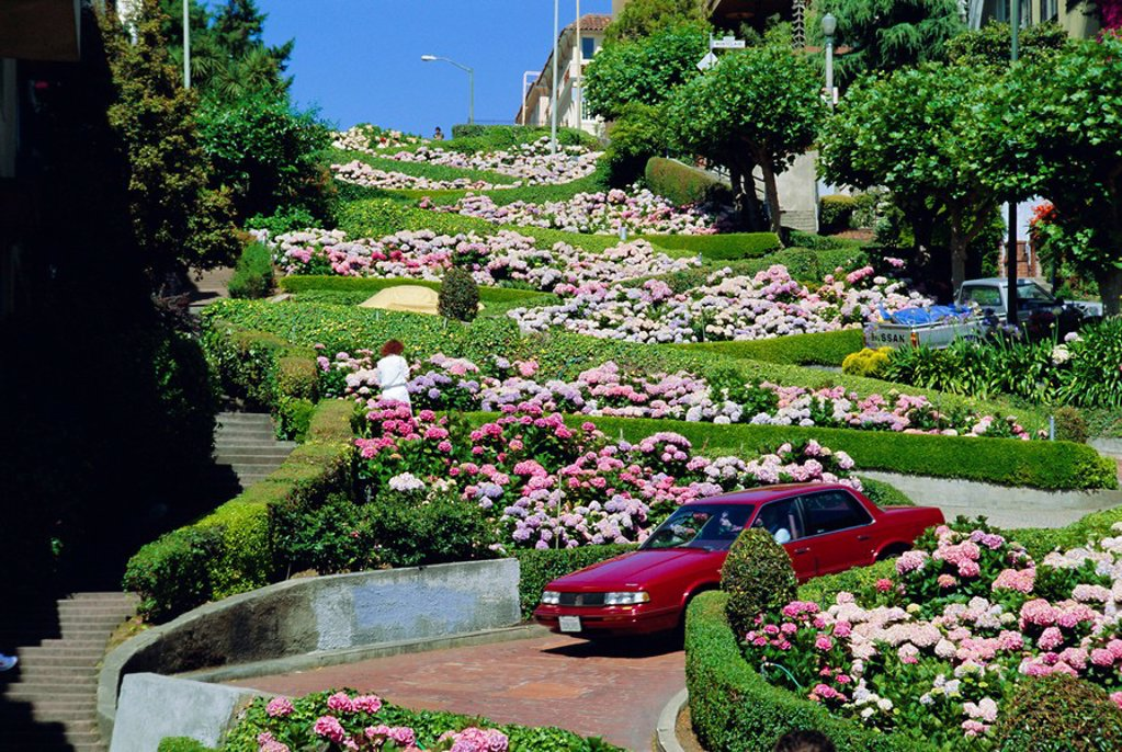 Stock Photo: 1890-24324 Driving down Lombard Street, the crookedest street in the world, Russian Hill, San Franscisco, California, USA
