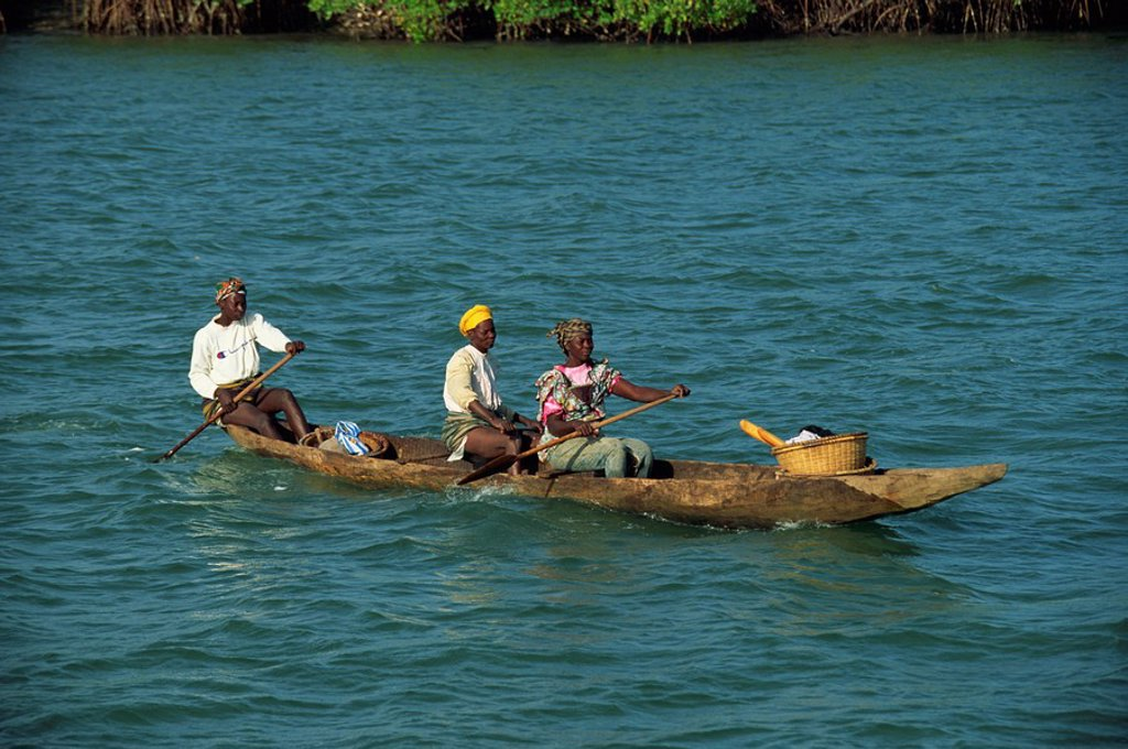 Dug out canoe, Gambia, West Africa, Africa : Stock Photo