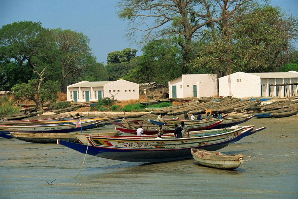 Fishing boats pulled up onto beach, Albreda, Gambia, West Africa, Africa : Stock Photo
