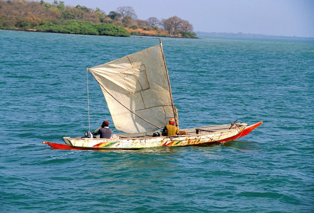 Stock Photo: 1890-25049 Canoe with sail, River Gambia, the Gambia, West Africa, Africa