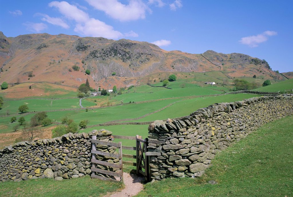 Stock Photo: 1890-25931 Stone wall, fields and Lingmoor Fell, Little Langdale, Lake District, Cumbria, England, United Kingdom, Europe