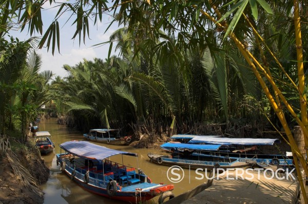 Navigating the waterways amid coconut palm trees, Tortoise Island, near My Tho, Mekong delta, Vietnam, Indochina, Southeast Asia, Asia : Stock Photo