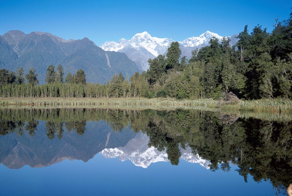 Perfect reflection on Lake Matheson, Fox Glacier, Westland, South Island, New Zealand, Pacific : Stock Photo