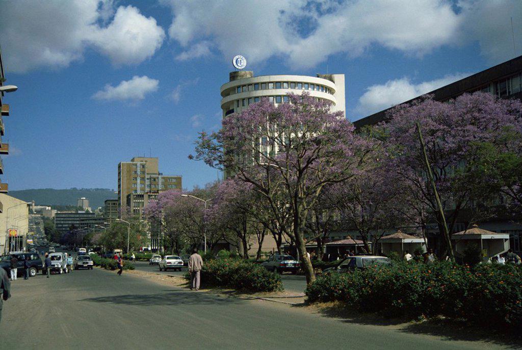 Street scene in Addis Ababa, Ethiopia, Africa : Stock Photo