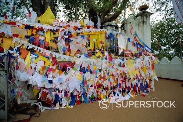 Stock Photo: 1890-3021 Shrine beneath a bodhi tree, Anuradhapura, UNESCO World Heritage Site, Sri Lanka, Asia