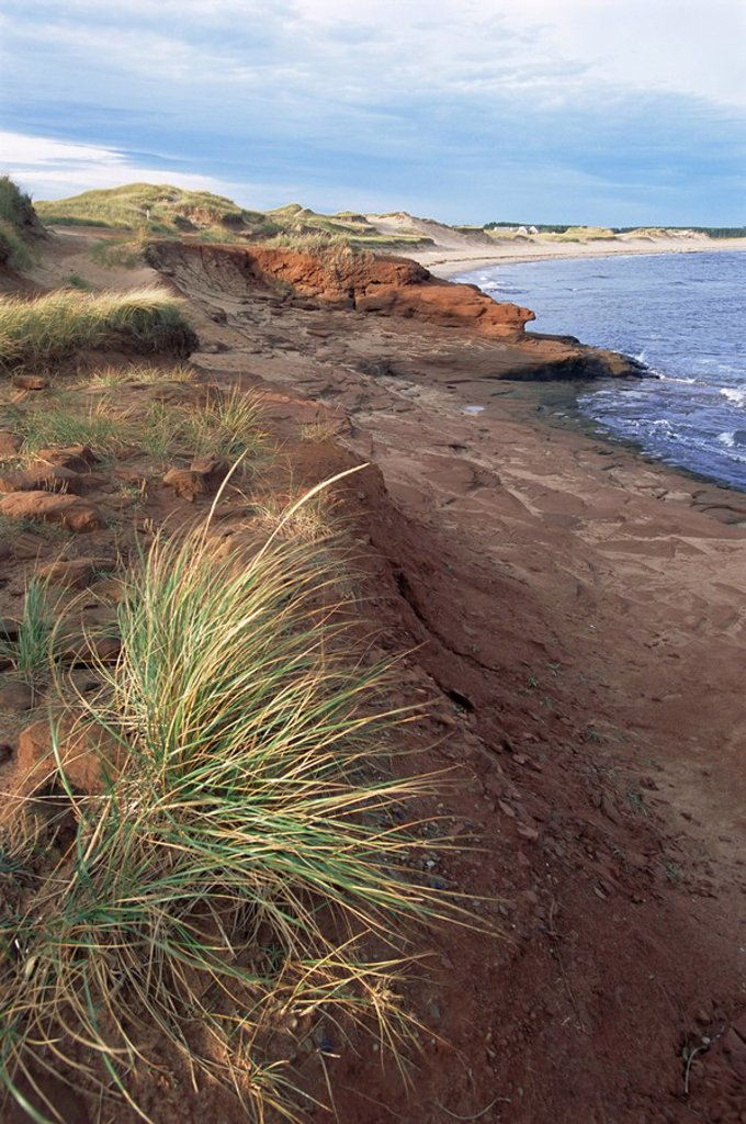 Stock Photo: 1890-31009 Cavendish coast, Prince Edward Island, Canada, North America