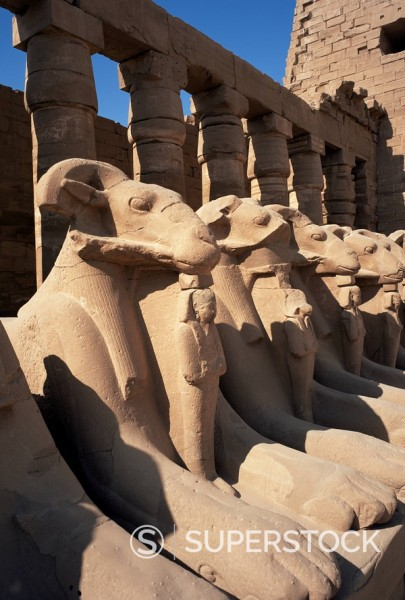 Stock Photo: 1890-3345 Temple of Karnak, Thebes, UNESCO World Heritage Site, Egypt, North Africa, Africa