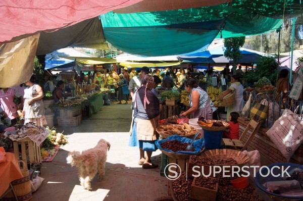 Market day at Zaachila, Oaxaca, Mexico, North America : Stock Photo