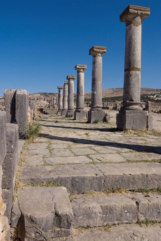 Decumanus Maximus main east west road, Roman site of Volubilis, UNESCO World Heritage Site, Morocco, North Africa, Africa : Stock Photo