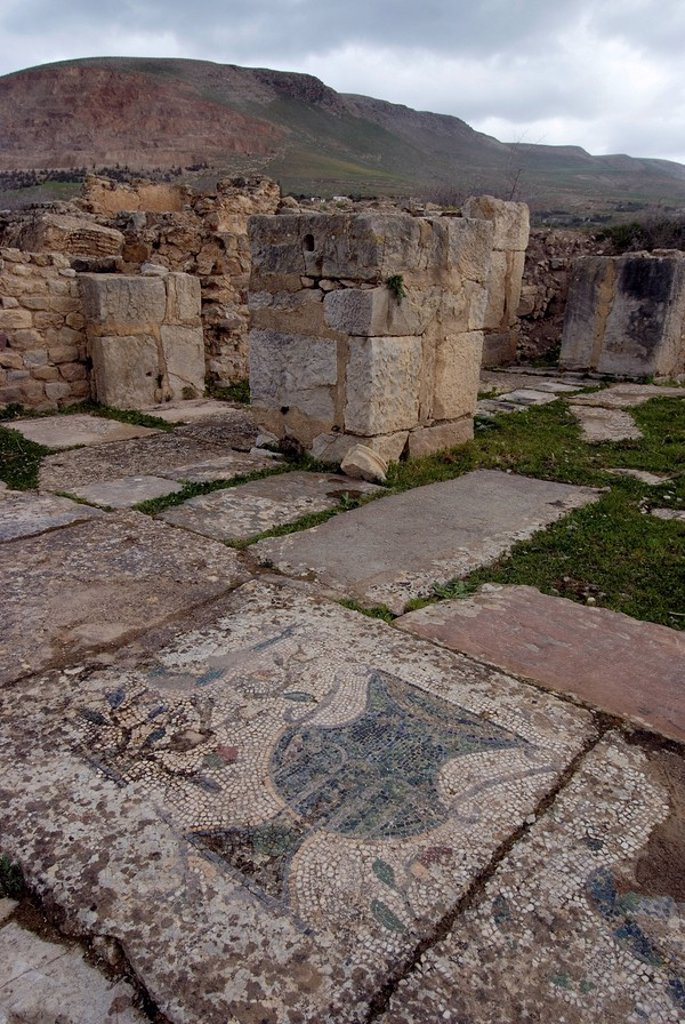 Stock Photo: 1890-40075 Christian basilica, Roman ruin of Bulla Regia, Tunisia, North Africa, Africa