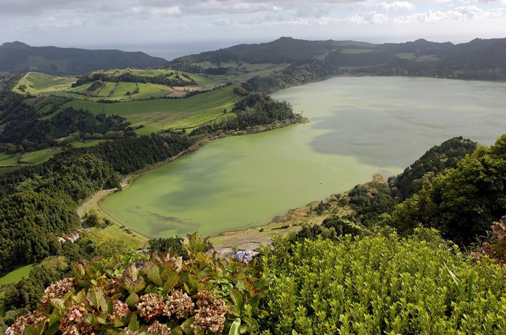 Furnas Lake, Sao Miguel Island, Azores, Portugal, Europe : Stock Photo