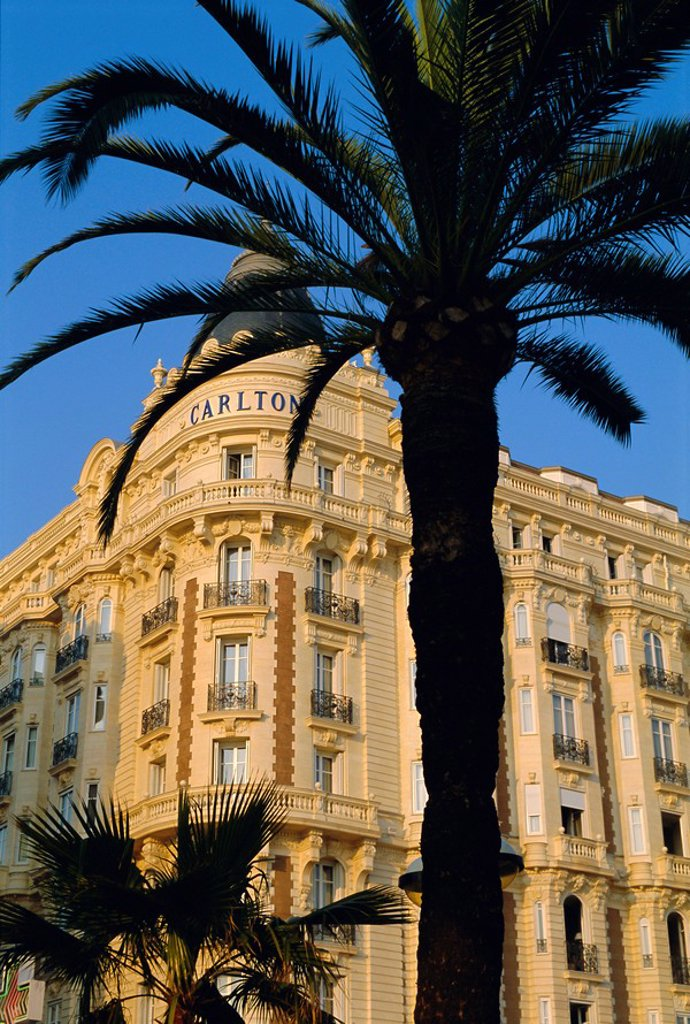 Stock Photo: 1890-44163 Hotel Carlton, Boulevard de la Croisette, Cannes, Cote d´Azur, Alpes_Maritimes, France