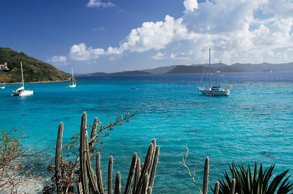 Stock Photo: 1890-4442 White Bay, Jost Van Dyke island, British Virgin Islands, West Indies, Central America