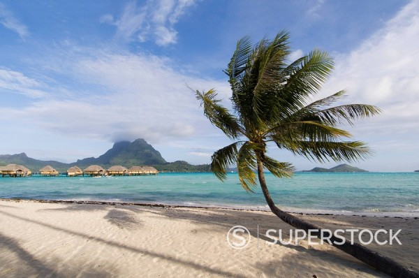 Stock Photo: 1890-49210 Pearl Beach Resort, Bora_Bora, Leeward group, Society Islands, French Polynesia, Pacific Islands, Pacific