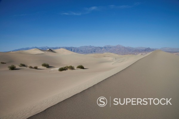 The Sand Dunes, Death Valley National Park, California, United States of America, North America : Stock Photo