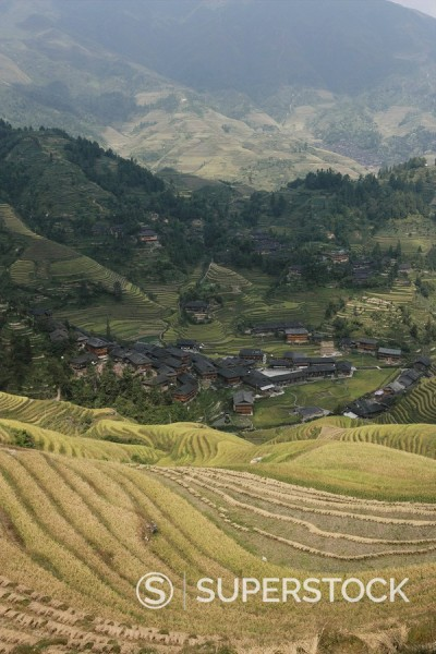 Stock Photo: 1890-57261 Longsheng terraced ricefields, Guilin, Guangxi Province, China, Asia