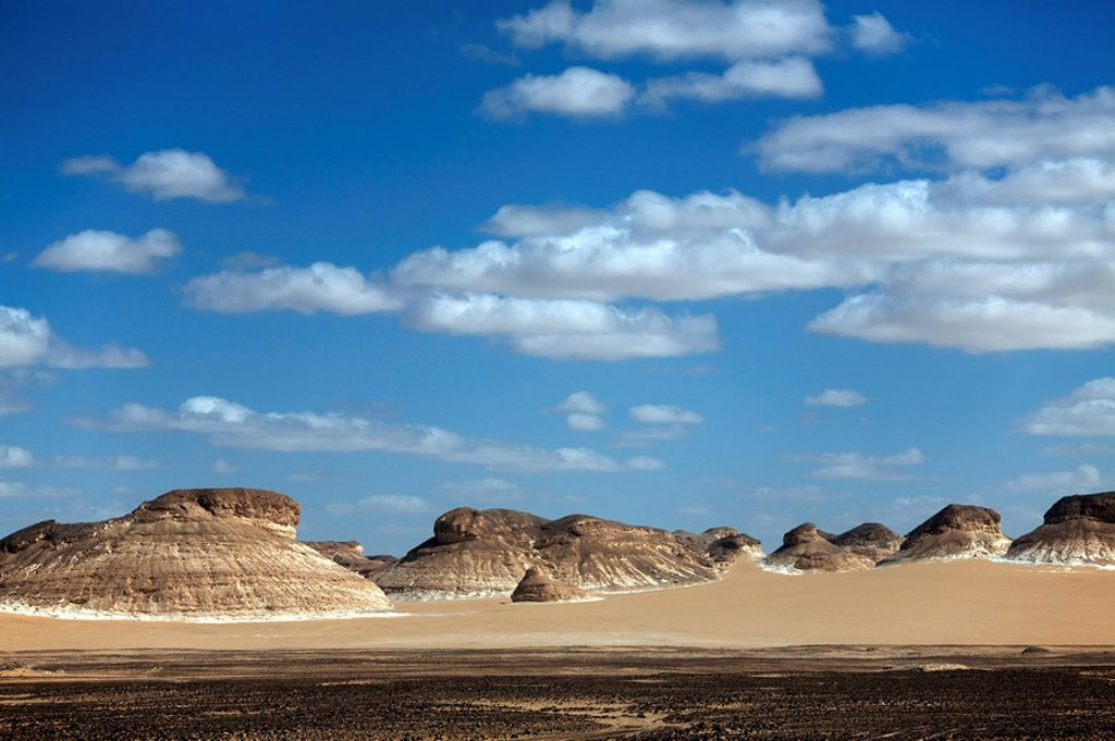 The White Desert, Farafra Oasis, Egypt, North Africa, Africa : Stock Photo