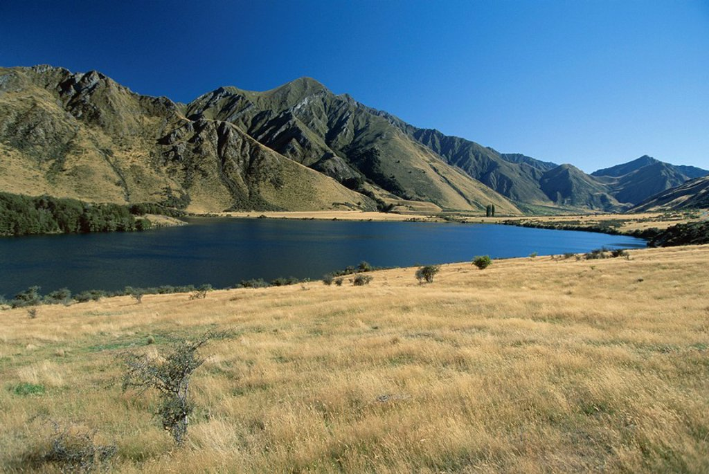Stock Photo: 1890-61783 Moke Lake, west of Queenstown, west Otago, South Island, New Zealand, Pacific