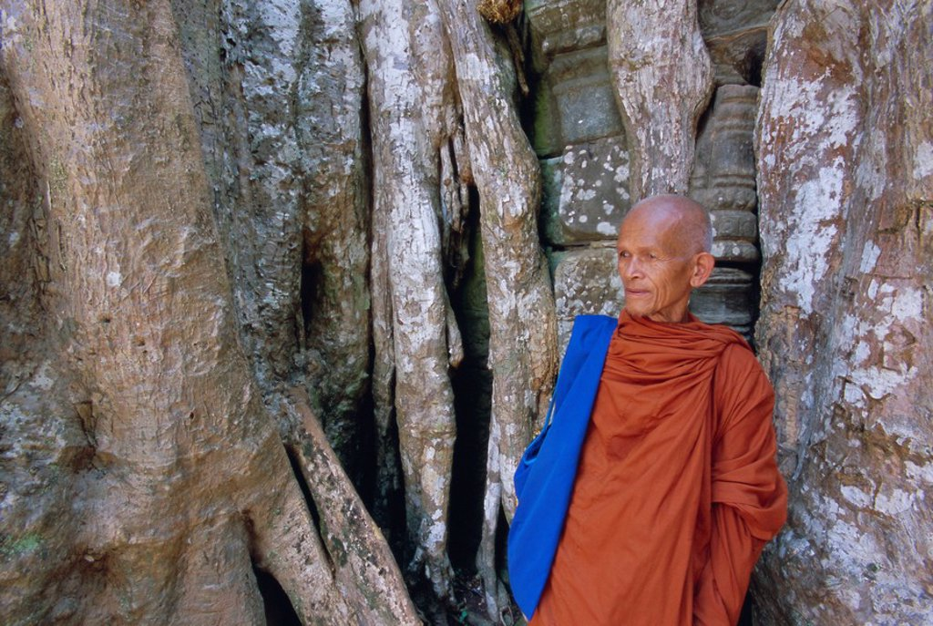 Buddhist monk in Ta Prohm temple, Angkor, UNESCO World Heritage Site, Siem Reap, Cambodia, Indochina, Asia : Stock Photo