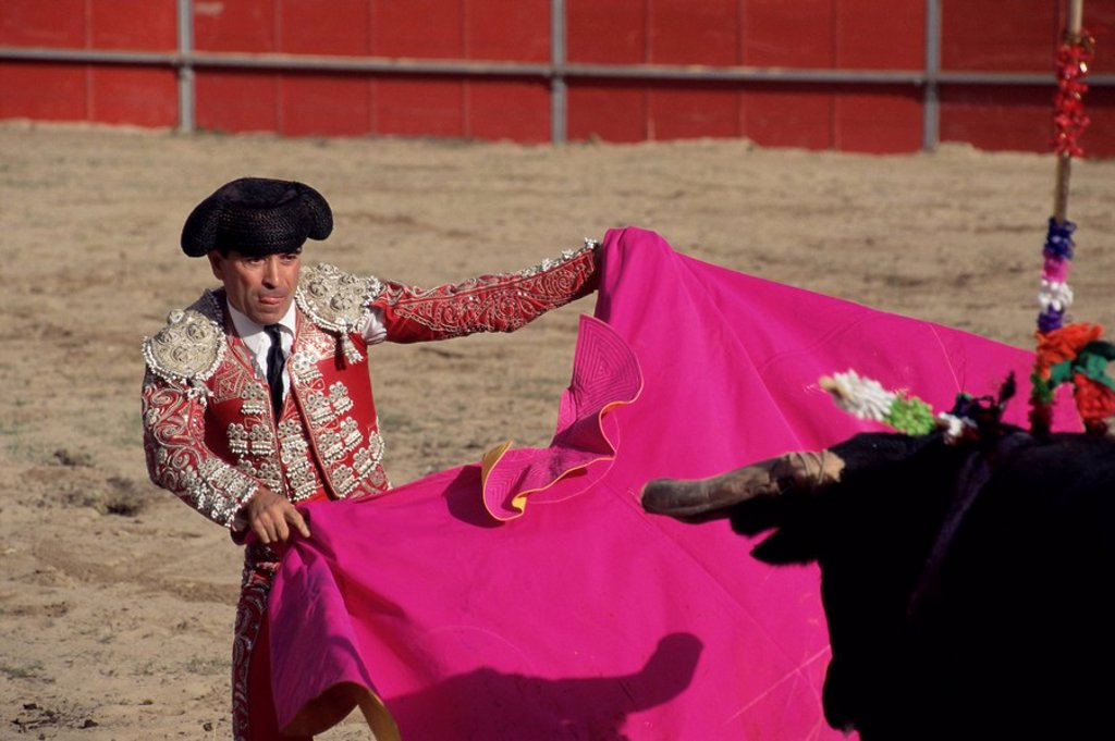Bullfighter, bull and cape, New Fairs, Ponte de Lima, Minho, Portugal, Europe : Stock Photo