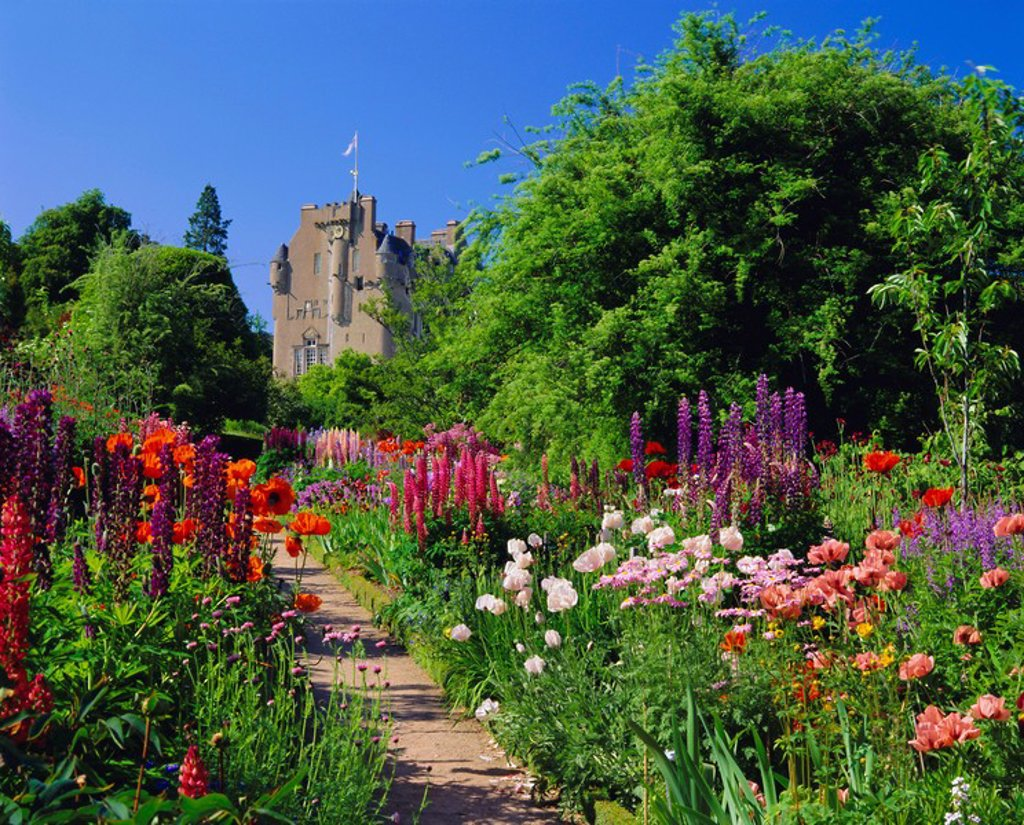 Herbaceous borders in the gardens, Crathes Castle, Grampian, Scotland, UK, Europe : Stock Photo