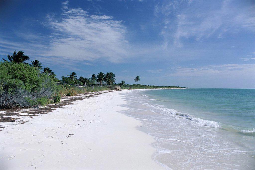 Stock Photo: 1890-72636 Bahia Honda Key, the Keys, Florida, United States of America U.S.A., North America