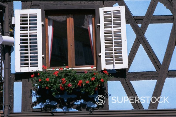 Window in timbered house, old town, Ribeauville, Alsace, France, Europe : Stock Photo