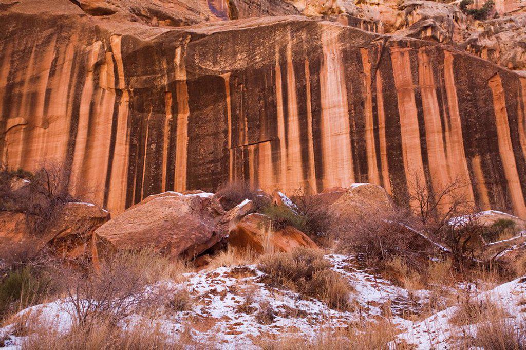 Desert Varnish on rocks, The Gorge, Capitol Reef National Park, Utah, United States of America, North America : Stock Photo