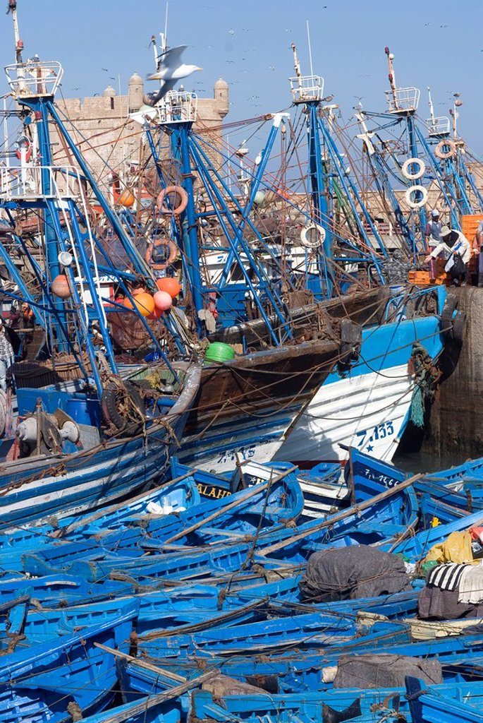 Stock Photo: 1890-73356 Port with fishing boats, Essaouira, Morocco, North Africa, Africa