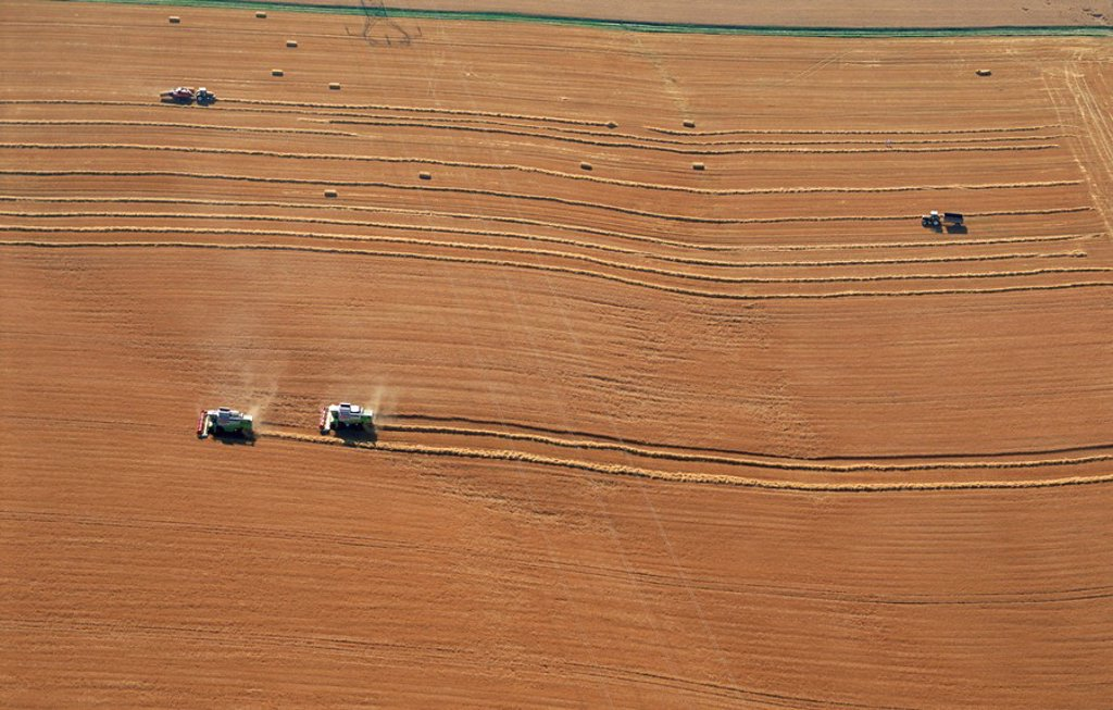 Aerial view of harvesters, Commercy Region, Meuse, Lorraine, France, Europe : Stock Photo