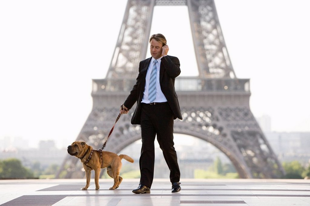 Stock Photo: 1890-77968 Business man with dog, Paris, France, Europe