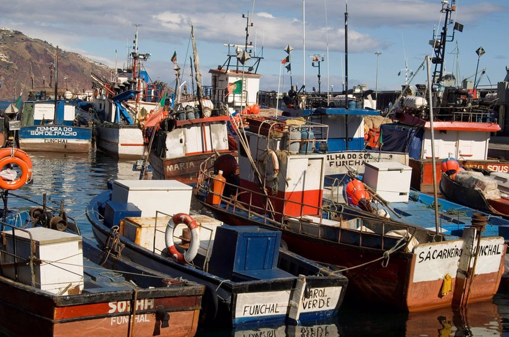 Fishing boats in the harbour in Funchal, Madeira, Portugal, Atlantic, Europe : Stock Photo
