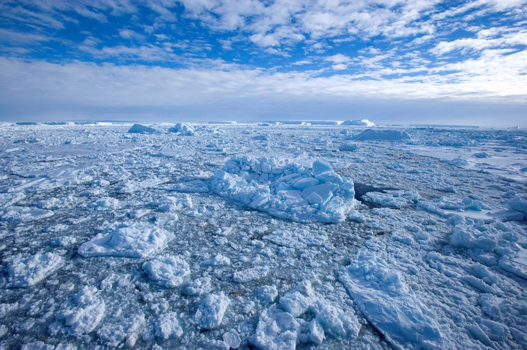 Stock Photo: 1890-81952 Pack ice and icebergs, Antarctic Peninsula, Weddell Sea, Antarctica, Polar Regions