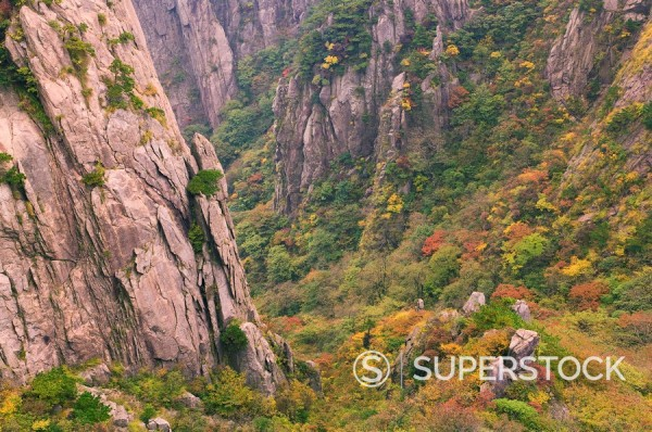 Stock Photo: 1890-83045 North Sea Scenic Area, Mount Huangshan Yellow Mountain, Anhui Province, China, Asia