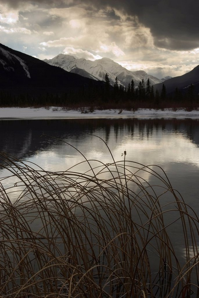 Stock Photo: 1890-84368 Vermilion Lakes, Banff National Park, UNESCO World Heritage Site, Rocky Mountains, Alberta, Canada, North America