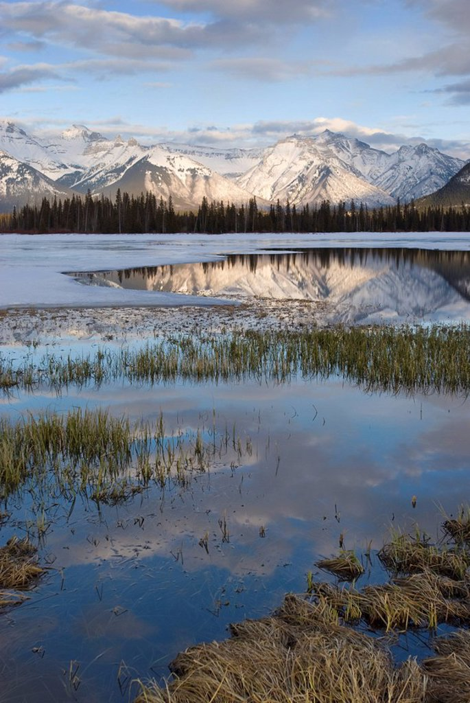 Stock Photo: 1890-84378 Vermilion Lakes, Banff National Park, UNESCO World Heritage Site, Rocky Mountains, Alberta, Canada, North America