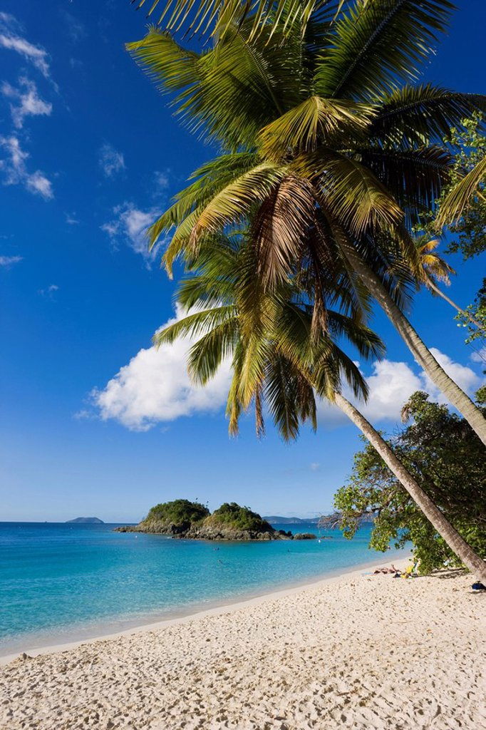 Stock Photo: 1890-87517 The world famous beach at Trunk Bay, St. John, U.S. Virgin Islands, West Indies, Caribbean, Central America
