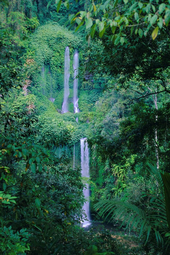 Stock Photo: 1890-88025 Waterfall on the northern slopes of 3726m Mt Rinjani volcano, near Senaru, Lombok, Indonesia