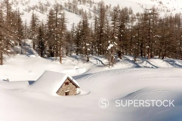 Alps in winter, Alpe Devero, Piedmont Region, Italy, Europe : Stock Photo