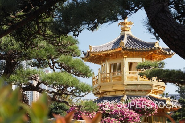 Golden Pagoda in Nan Lian Garden near Chi Lin Nunnery, Diamond Hill, Kowloon, Hong Kong, China, Asia : Stock Photo