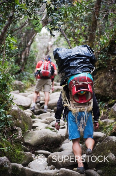 Stock Photo: 1890-97402 Porter and hiker on trail, Kinabalu National Park, Sabah, Borneo, Malaysia, Southeast Asia, Asia