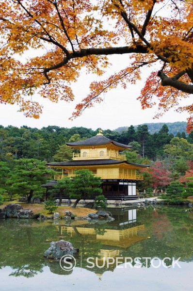 Autumn colour leaves, Golden Temple, Kinkaku ji Kinkakuji, dating from 1397, Kyoto, Japan, Asia : Stock Photo